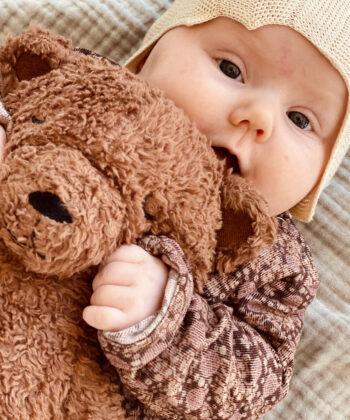 Organic cotton Tjugga teddy bear