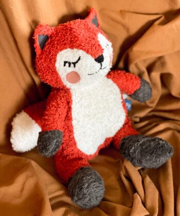 Sally teddy bear